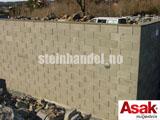 Asak Forskalingsblokk F 20-504