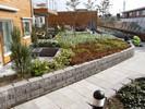 Benders Megawall Garden2