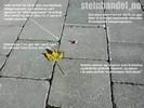 Multiblokk Helle Antikk2