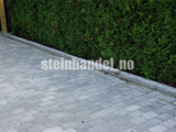 Granitt Kantstein 10x25cm, m/fas 2
